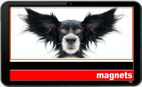 Magnets - ©CHUCK MILLER Media.com